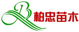 上海柏忠苗木种植专业合作社