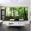 彩绘施工装饰公司合作,配合装饰公司设计施工背景墙